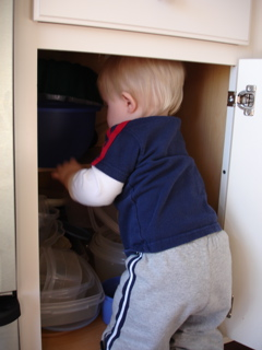 In the Cupboard 2